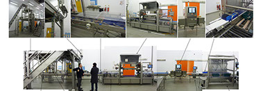 Ishida food packaging assembly modular line