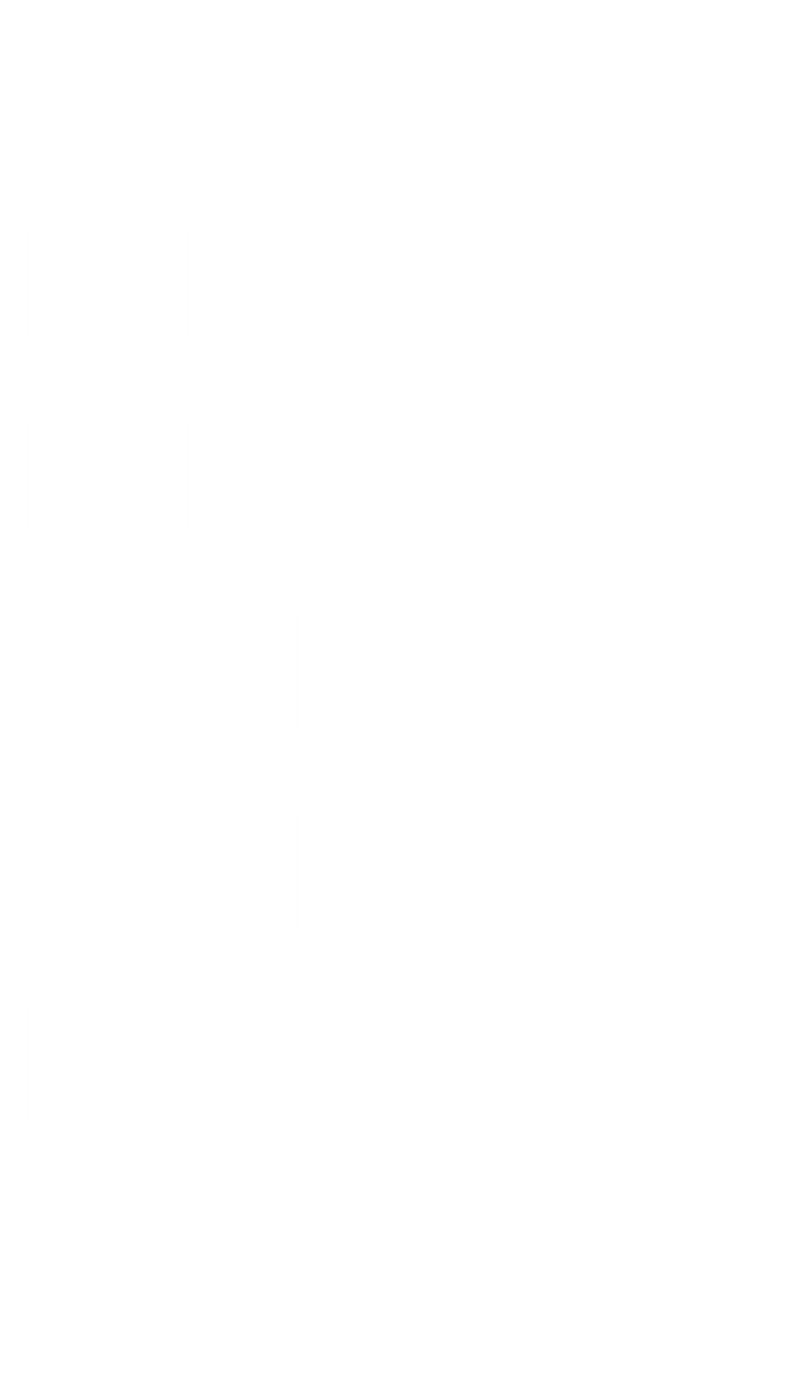 SO MUCH MORE THAN THE FLIGHT